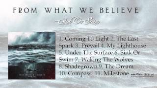 RFD 035: FROM WHAT WE BELIEVE - Sink or Swim // 02 The Last Spark