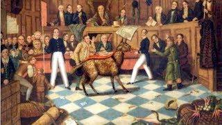 Средневековые суды над животными