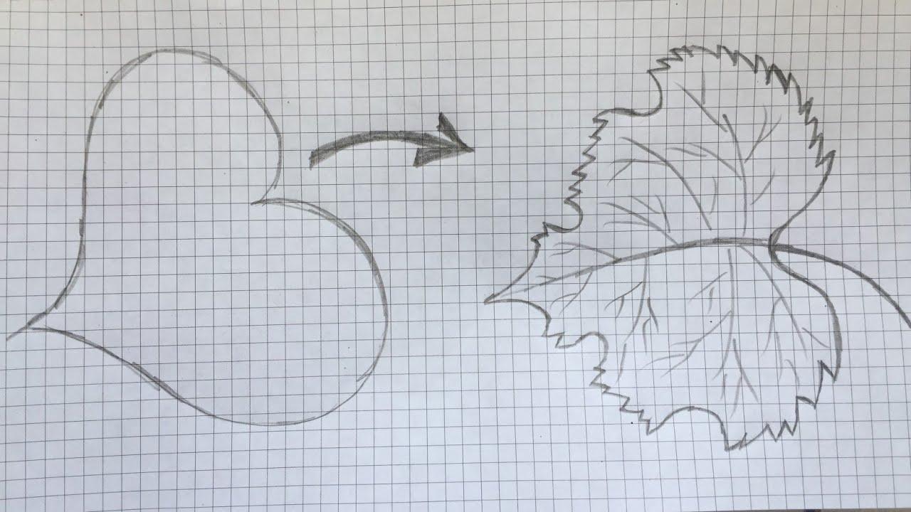 Çok Kolay yaprak çizimleri    Çocuklar için çizimler