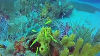 Duiken double wreck & anchor point - Sint Eustatius