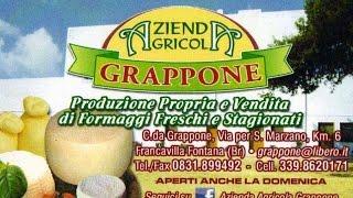 Masseria Grappone   Azienda Agricola - Francavilla Fontana (BR) - www.masseriagrappone.info