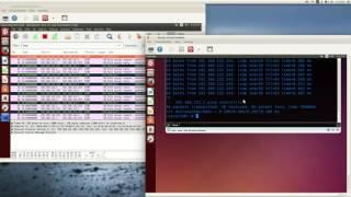 TCP(telnet) session hijacking