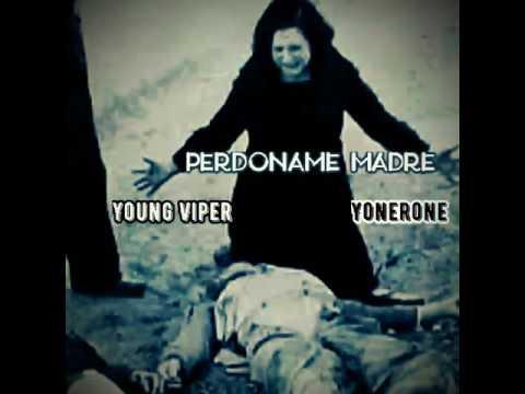 Perdoname Madre Young Viper- Yonerone