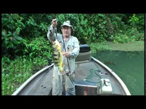 FISHING IN PANAMA CANAL 1, PEACOCK BASS ( Panama Fishing )