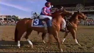 2002 Belmont Stakes (+PostParade & Results)
