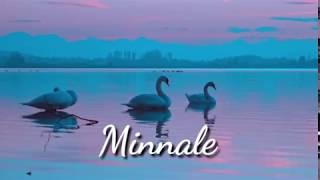 Minnale Theme, Pooppol Poopol nature remix