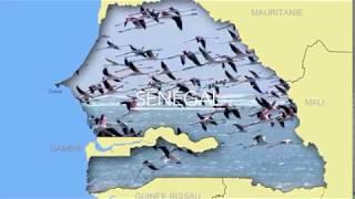 Senegal  tourisme 1