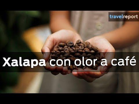 Xalapa y Coatepec: travesía con aroma a café