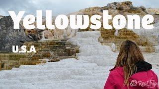 El primer parque nacional del mundo! - Yellowstone National Park