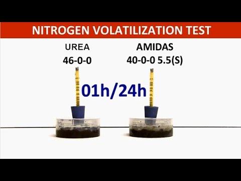 Nitrogen Volatilization Test : Amidas Vs Urea