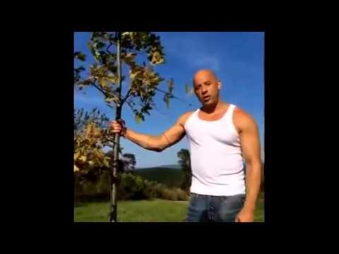 Vin Diesel ALS Ice Bucket Challenge 'Ice Bucket Challenge'  2014 new HD