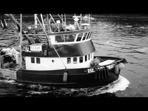 Sitka Herring 2016 | We Did It All For The Roe