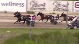 Vidéo de la course PMU PRIX MENNO HORNSTRA 53