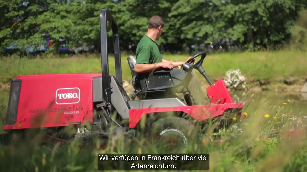 Toro Deutsch