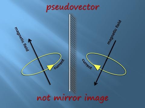 Scalars and Vectors (Physics and Mathematics)