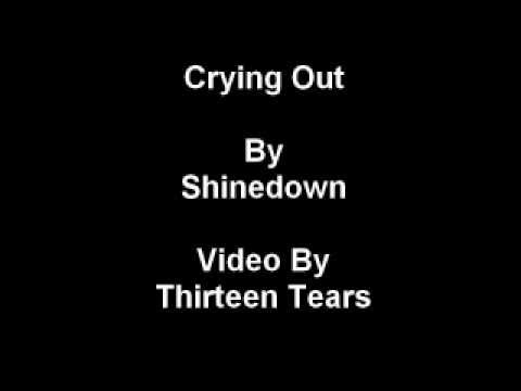 Crying Out-Shinedown lyrics
