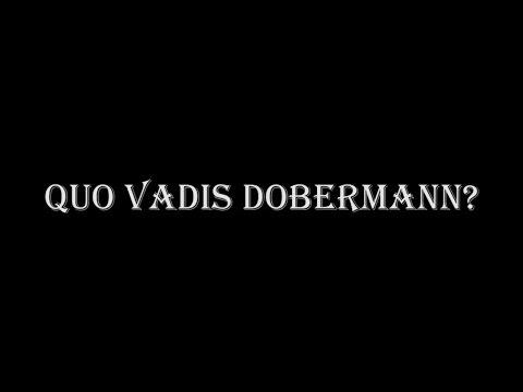 Quo Vadis Dobermann?