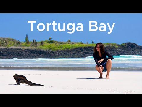 La playa más bonita del mundo está en Galápagos. Tortuga Bay