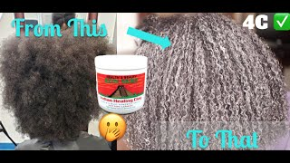 HOW TO USE CLAY MASK ON 4C HAIR CLAY MASK REVIEW 4C HAIR AZTECH INDIAN HEALING CLAY MASK