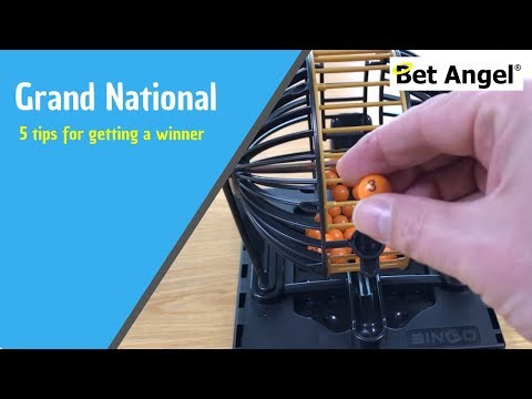 Peter Webb - Bet Angel - Top five tips for getting a winner at the Grand National