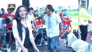 Gambar cover PAIJO - TATA ASHEVA ft JOKER BERWARNA - KEN AROCK LIVE BULUSARI, TAROKAN