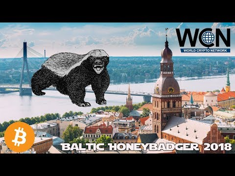 Interview with Adam Back from Blockstream - Baltic Honeybadger 2018 Conference