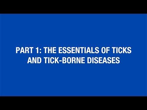 Part 1: The Essentials Of Ticks And Tick-Borne Diseases [Hot Topic]