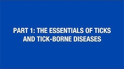 Part 1: The Essentials of Ticks and Tick-Borne Diseases [Hot Topic]
