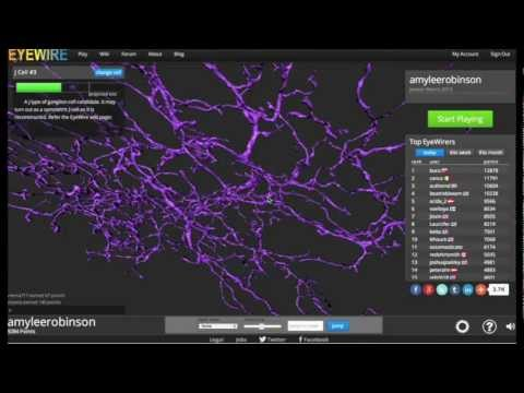 How to explore the IFLS Neuron in EyeWire