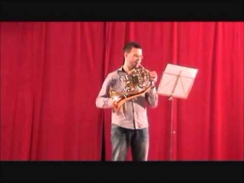 Enrique Llobet - Beethoven 7