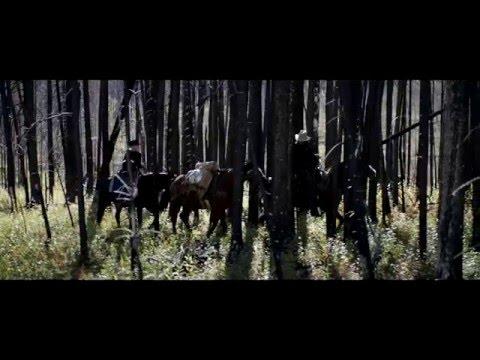 Trailer - Gold