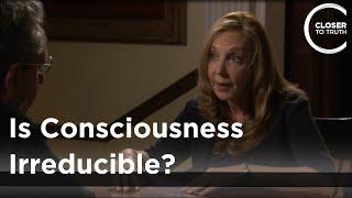 Rebecca Newberger Goldstein - Is Consciousness Irreducible?
