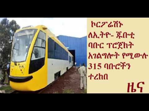 Corporation takes delivery of 315 trains for Ethiopia-Djibouti railway
