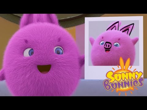 Cartoons for Children | Sunny Bunnies SUNNY BUNNIES PICTURE PERFECT | Funny Cartoons For Children HD