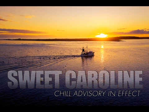Beautiful South Carolina Coast (4k) DRONE