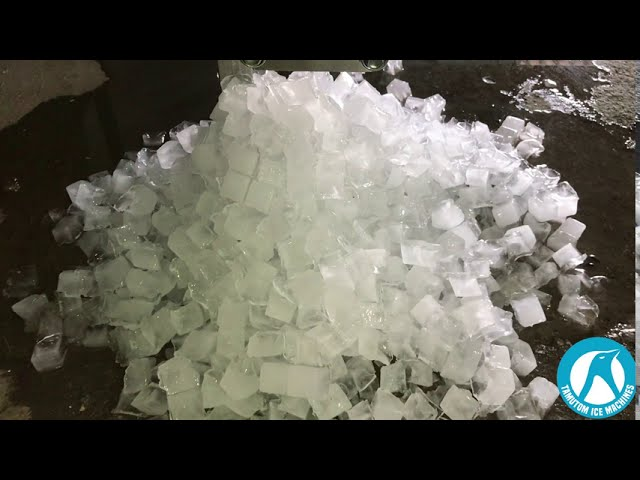 How do we test our cube ice machine? (TAMUTOM)