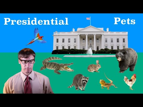 All the Presidents' Pets