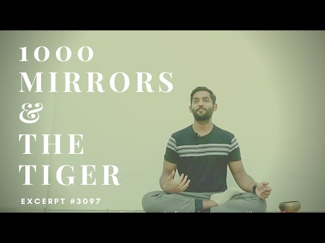 1000 Mirrors and the Tiger | A story of every Meditator