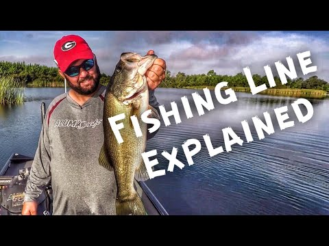 Bass Fishing Basics - Choosing The Correct Fishing Line For The Job
