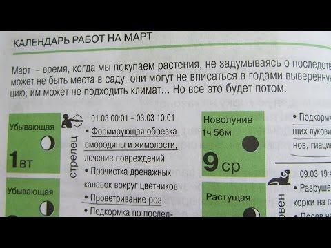 ЛУННЫЙ КАЛЕНДАРЬ НА МАРТ - 2016 год.