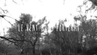 Le vent nous portera - Sophie Hunger (Lyrics Video) with English translation