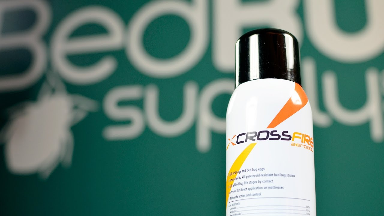 Crossfire Aerosol Bed Bug Spray Review Youtube