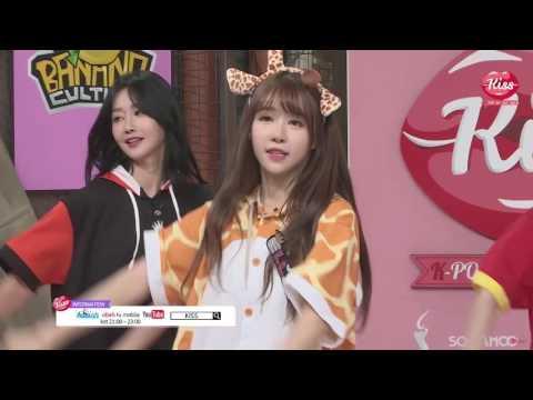 160701 Crayon Pop 크레용팝 -  Dancing Queen Animal Costume Cut