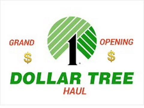 GRAND OPENING DOLLAR TREE HAUL