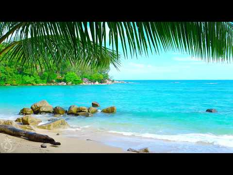 🎧 Tropical Island Beach Ambience Sound  8 Hours Ocean Sounds For Relaxation And Holiday Feeling