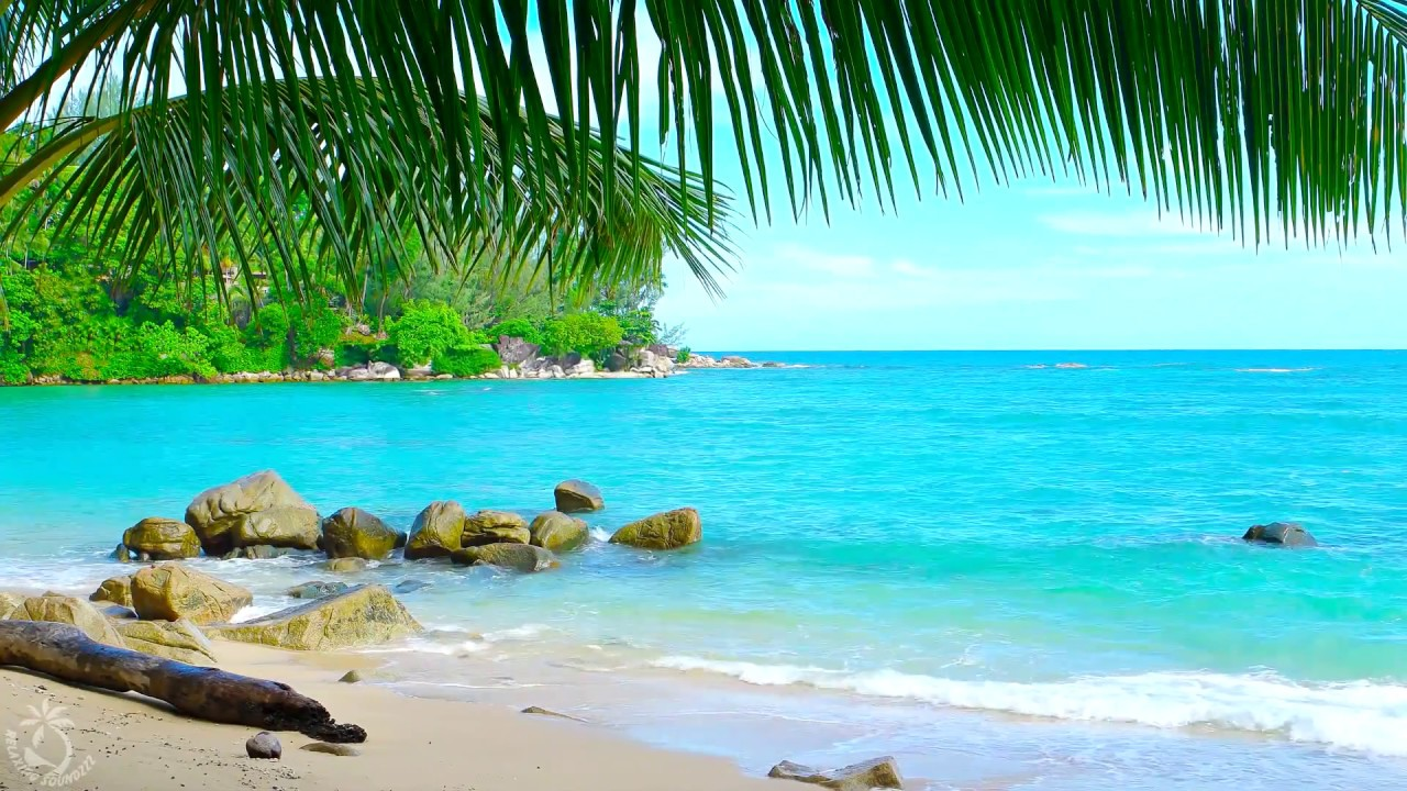 ? Tropical Island Beach Ambience Sound - Thailand Ocean Sounds For Relaxation And Holiday Feeling