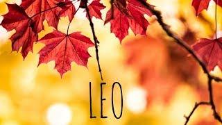 LEO NOVEMBER 2018 🦃🍁🍃 LOVE TAROT READING FEAR IS HOLDING YOU BACK