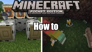 How To Put Fish In The Water Bucket(MCPE)|MInecraft PE - How To #1