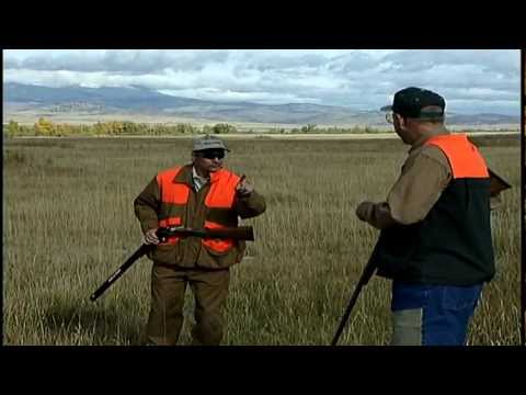 Preview of Hunting  Hungarian Partridge Montana by Sunrise productions