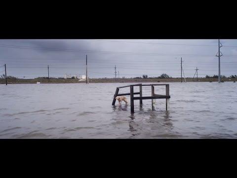 Ураган: Одиссея ветра - Русский трейлер 2016 Full HD